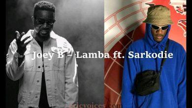 Photo of Joey B – Lamba Ft Sarkodie