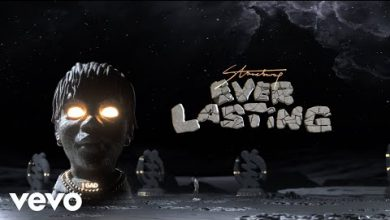 Photo of Official Video: Stonebwoy – Ever Lasting